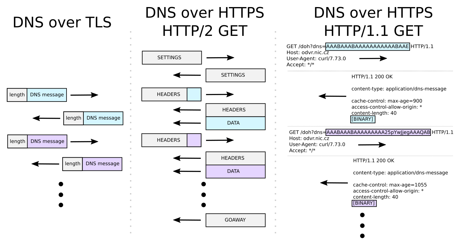 Encrypted DNS protocol formats